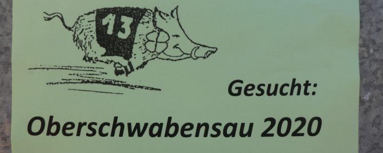 Oberschwabenschau 2019 - Oberschwabensau